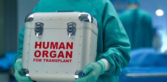On the Ethics of Organ Transplantation: A Catholic Perspective (Part I)