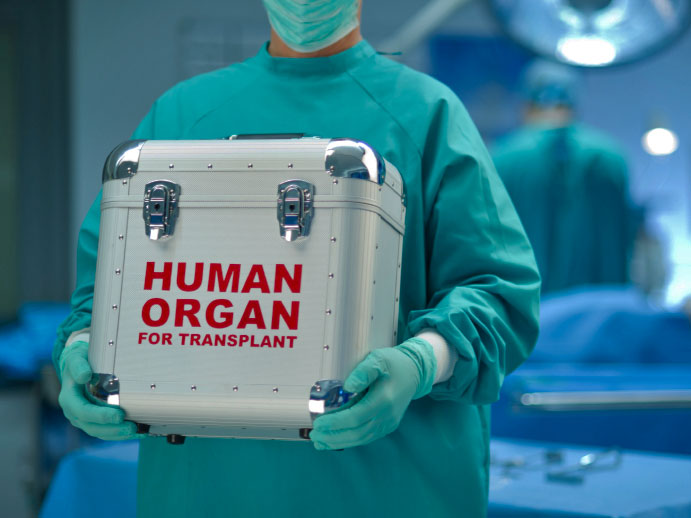 On the Ethics of Organ Transplantation: A Catholic Perspective (Part I)
