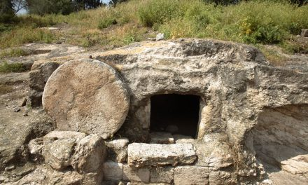 Thirty-Second Sunday in Ordinary Time:  Believing in Resurrection