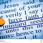 Faith in an Impatient Age: 26th Sun OT