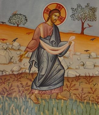 Seeds of Eternal Life in the Soil of Ordinary Time